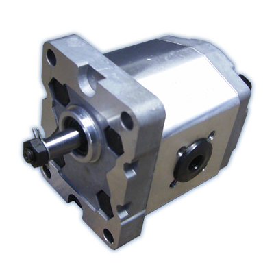 GROUP 1 GEAR PUMP 1.10 - 8.0cc